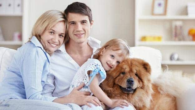 Wills & Trusts dog-young-family Direct Wills Norwood Green